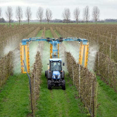 Life-Threatening Injuries Caused by Roundup